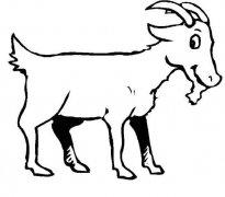 长角的山羊简笔画