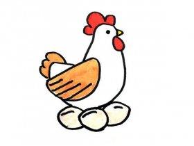 下蛋的母鸡简笔画
