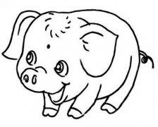 可爱猪年吉祥物简笔画图片
