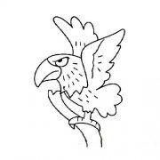 儿童简笔画:枝头上的老鹰