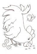 少儿母鸡啄米简笔画图片