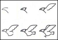儿童关于老鹰的简笔画画法教程