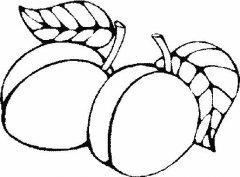 两个桃子简笔画
