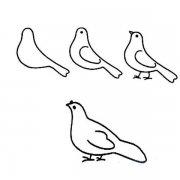 和平鸽简笔画画法教程