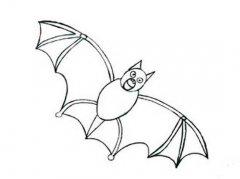 飞天蝙蝠简笔画图片