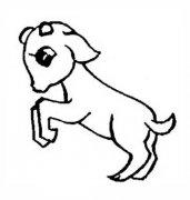 幼儿简笔画图片:小羊