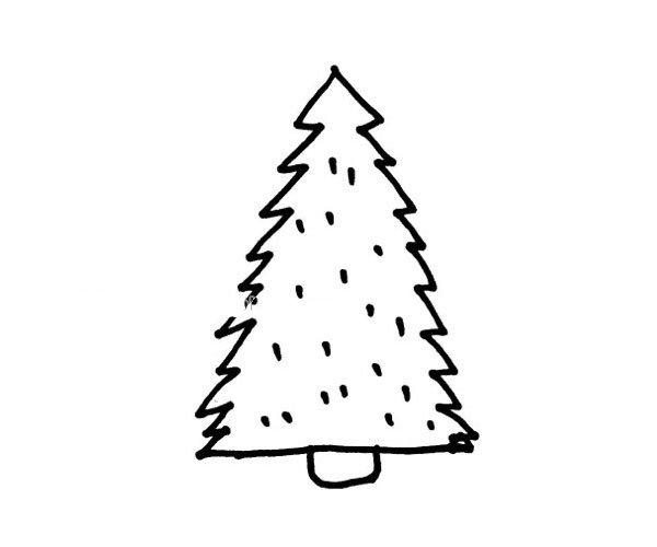 松树简笔画图片3