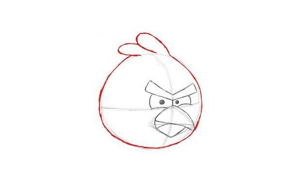 9.画红色愤怒的小鸟头部轮廓,注意要上窄下宽。在头顶,画两条长长的重叠曲线,作红色愤怒的小鸟头上的羽毛。