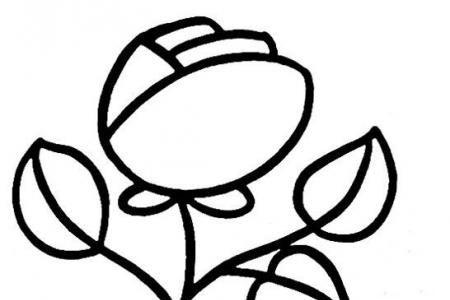 玫瑰花的画法步骤素描