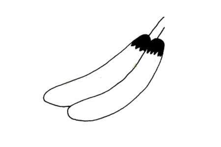 简单的植物简笔画 茄子简笔画图片