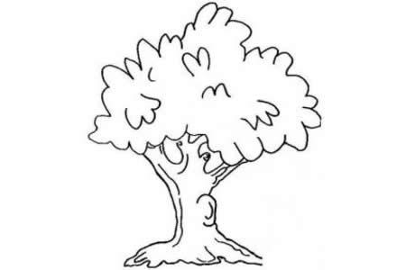儿童简笔画 美丽的大树简笔画图片大全