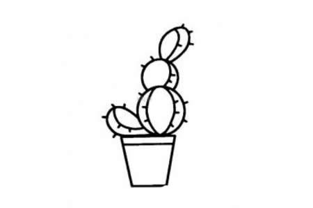 花盆里的仙人掌简笔画