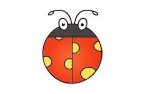 甲壳虫、七星瓢虫的画法分解步骤