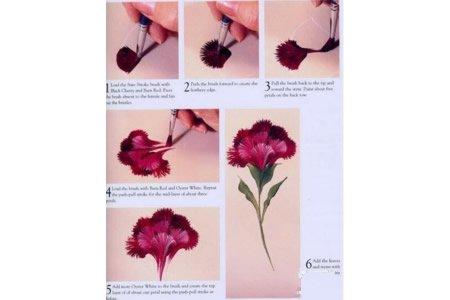 画一朵康乃馨送妈妈 康乃馨绘画步骤分享
