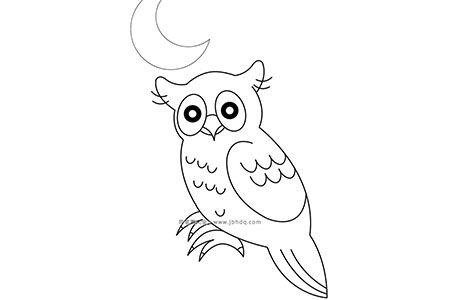 月光下的猫头鹰