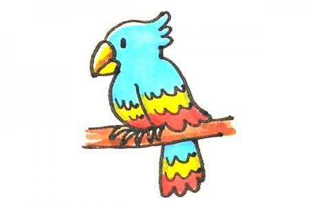 儿童轻松学画鹦鹉