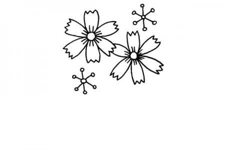 四步学画漂亮的菊花