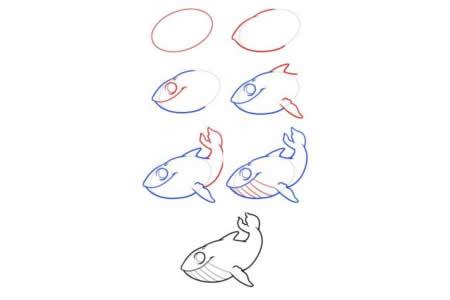 简笔画教程 鲸鱼的简笔画步骤图