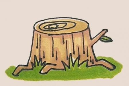 简笔画树桩