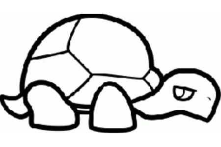 乌龟简笔画超简单
