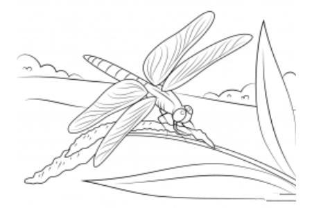 卡通蜻蜓的画法