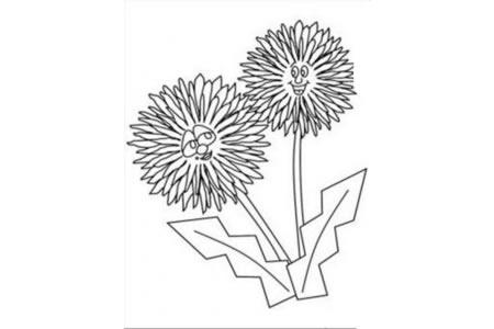 花朵图片 可爱的卡通小菊花简笔画