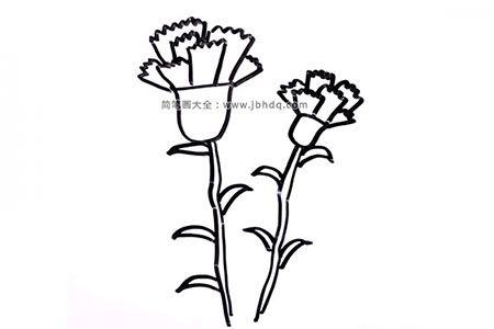 母亲节绘画素材 康乃馨简笔画图片