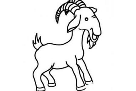 欢快的小山羊简笔画
