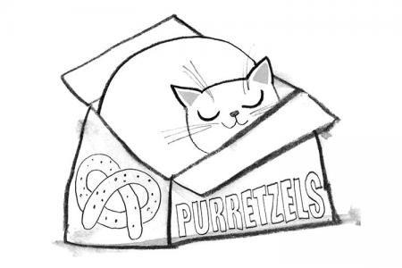 可爱小猫和盒子简笔画图片