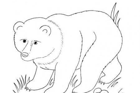 熊妈妈和熊宝宝