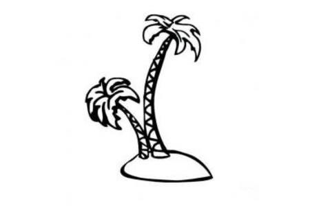 植物简笔画大全 椰子树简笔画图片