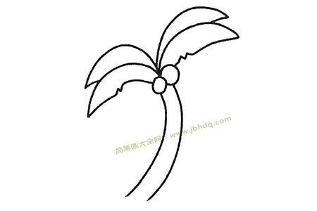 儿童简笔画大全 椰子树简笔画教程