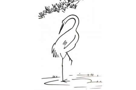 关于鹤的简笔画画法