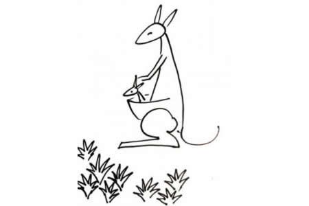 袋鼠的简笔画画法