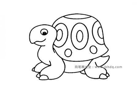 一组可爱的乌龟简笔画图片