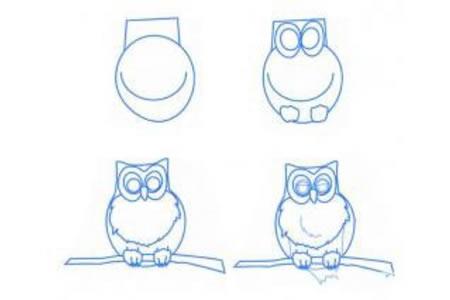 简笔画教程 枝头上的猫头鹰简笔画步骤图