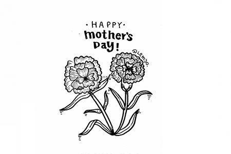 母亲节送妈妈漂亮的康乃馨