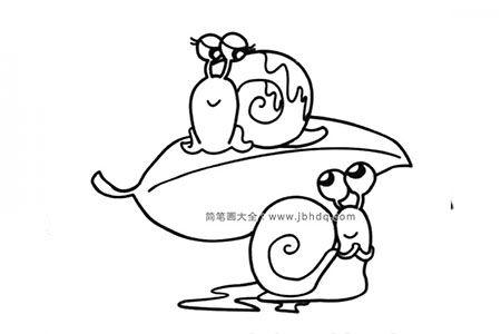 蜗牛先生和蜗牛太太