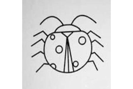 我是七星瓢虫