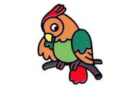鹦鹉简笔画画法