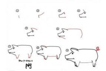 如何画猪 猪的简笔画教程