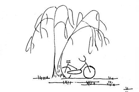 自行车停放在柳树下