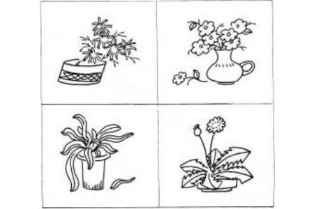 植物盆景简笔画