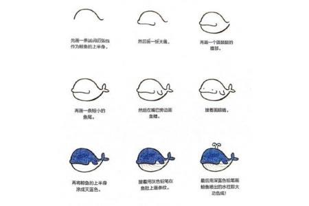 一组画动物的简笔画步骤图
