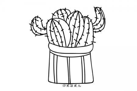 一组植物简笔画手绘