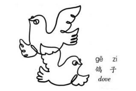 一笔画鸽子的画法
