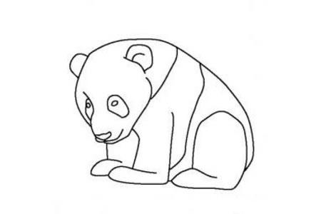 动物简笔画 熊猫宝宝简笔画图片
