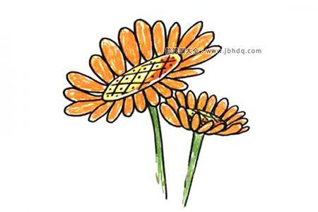 画一支小花送自己 向日葵