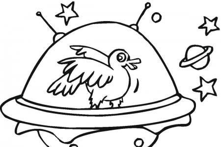 鸭子乘坐宇宙飞船