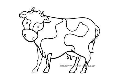简笔画图片奶牛
